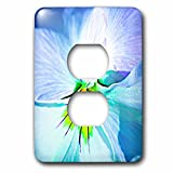 3dRose Alexis Photography - Flowers Pansy - White pansy flower, yellow center, macro photo - Light Switch Covers - 2 plug outlet cover (lsp_270457_6)