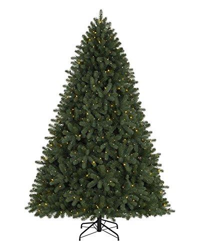 Should I Buy Led Christmas Lights - 3
