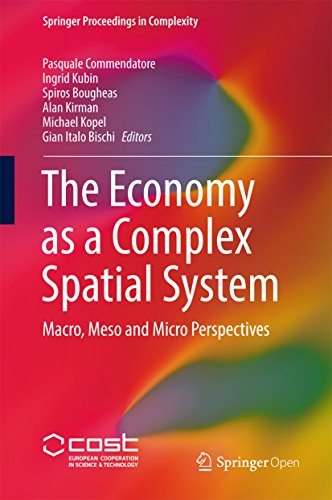 (The Economy as a Complex Spatial System: Macro, Meso and Micro Perspectives (Springer Proceedings in Complexity))