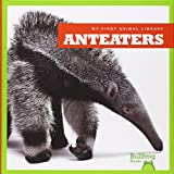 Anteaters (Bullfrog Books: My First Animal Library)
