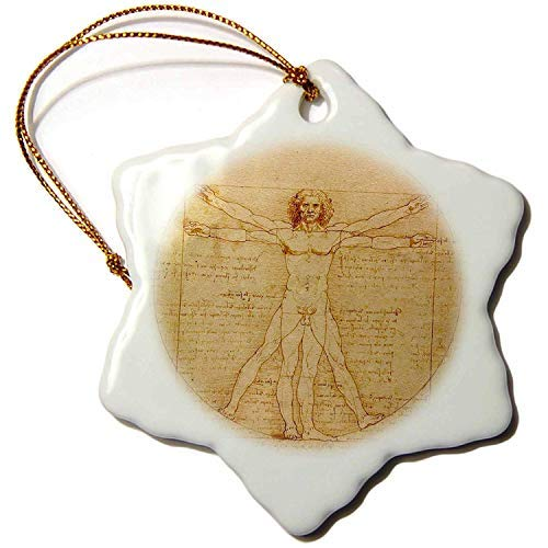 Ditooms Vitruvian Man by Leonardo Da Vinci 1490 Fine Anatomical Art Human Anatomy Porcelain Snowflake Ornament, ()