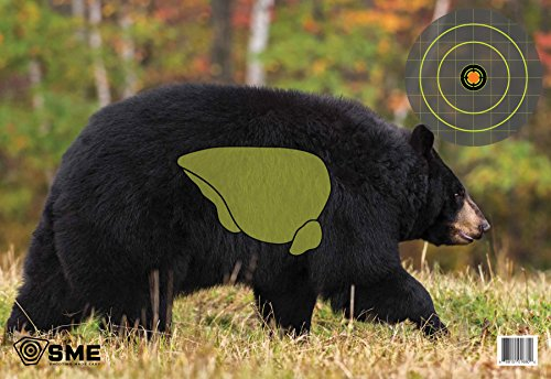 SME Target Bear Target (Bear Target)