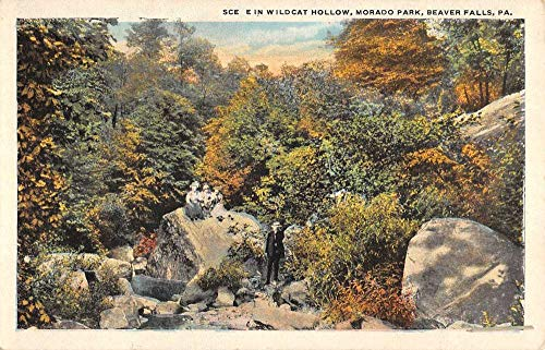 Antique Wildcat - Beaver Falls Pennsylvania Morado Park Wildcat Hollow Antique Postcard K431639