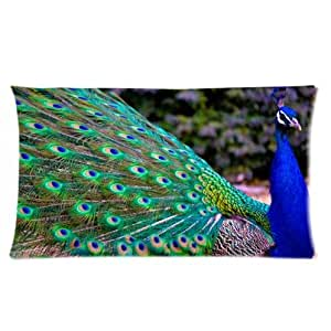 Special Design Beautiful Peacock Feathers Rectangle Pillow Cases Pillow Cover 20x36 (two side)