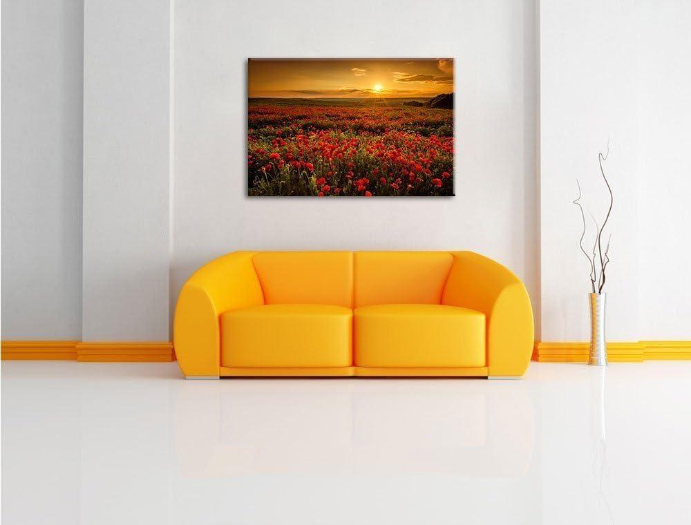 WTD Toile d/écorative Motif coquelicots en fleur Rouge Toile 80 x 60/cm