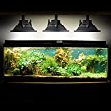 Biltek 10W LED Aquarium Flood Light COOL White High Power Fish Tank Lighting Reef Plant Decor Salt Fresh H2O Main Lighting, Sub Lighting, Fresh Water Tanks, Salt Water Tanks