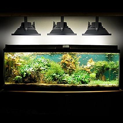 biltek 100w led aquarium flood light cool white high power fish tank