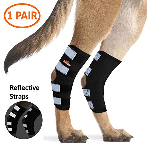 NeoAlly Dog Rear Leg Braces [Pair] Canine Hind Hock Wraps with Safety Reflective Straps for Joint Injury and Sprain Protection, Wound Healing and Loss of Stability from Arthritis (Black L Pair)