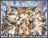 Mome Diamond Embroidery 5D Diamond Painting Kit DIY Rhinestone Embroidery Cross Stitch Arts Craft for Home Wall Decor ~Sleeping Cats Family 30X25cm (C)