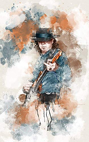 (Stevie Ray Vaughn Art Painting Movie Poster Print by L.A. Artwork)