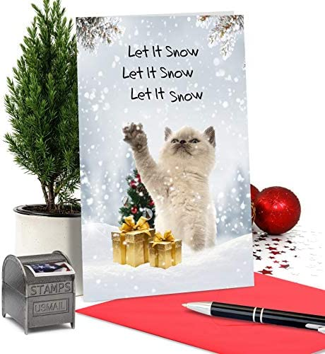 Chance of Snow Christmas Cat Photo Card