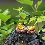 Huhuswwbin Miniature Birds Micro Landscape Bonsai Succulent Plants Mini Garden DIY Decor - Best Indoor Outdoor Decorations