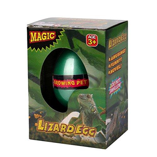 Coerni Christmas Gift - Large Magic Hatching Egg Growing Pet Dinosaur / 7 Animal Eggs (Lizard Animals)