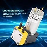 Aeloa Micro Vacuum Pump, Air Pump, 0.4-1L/min