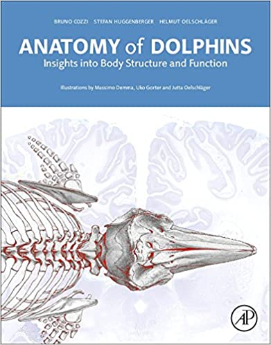 Amazon.com: Anatomy of Dolphins: Insights into Body Structure and ...