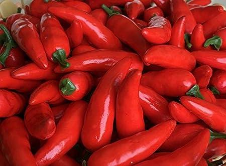 30 Pcs Artificielle Petit Chili Simulation Poivre Mini Trois-Couleur Rouge + Jaune + Vert Petit Hot Pepper R/éaliste Faux L/égume D/écor /À La Maison Chaque Couleur 10 Pcs