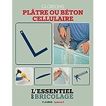Portes, cloisons & isolation : plâtre ou béton cellulaire ? (L'essentiel du bricolage) (French Edition)