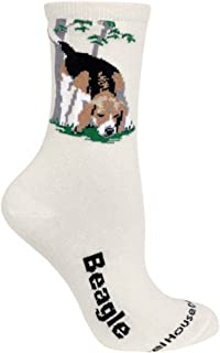 product image for Wheel House Designs Beagle Women's Argyle Socks (Shoe size 6-8.5)
