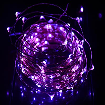 HAHOME Waterproof Led String Lights,33Ft 100 LEDs Indoor and Outdoor Starry Lights with Power Supply for Christmas Wedding and Party Decoration,Purple