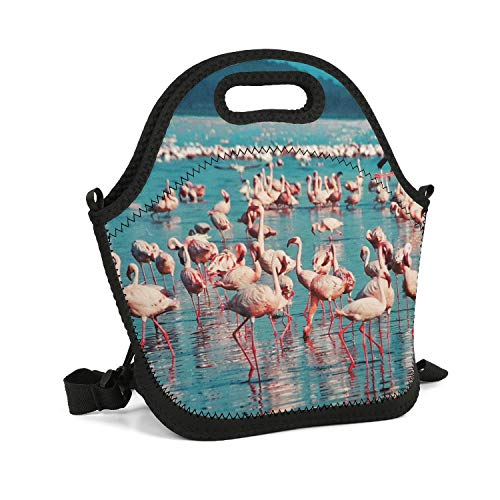 Personalized Lunch Box Pink Flamingo Lake Nakuru Kenya Insulated Resuable Thermal Durable Leakproof Recycled Healthy Outdoor Work Lunch Bag