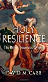 Holy Resilience, David M. Carr, 0300204566