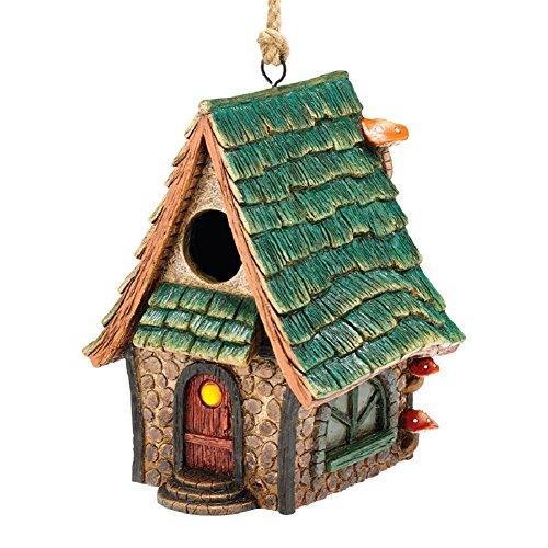Department 56 Garden Guardians Green Roof Cottage Birdhouse w/Front Door (Bird Guardian Birdhouse)