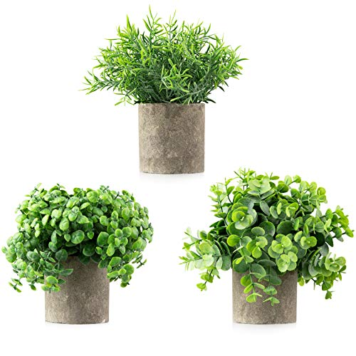 Casaluxe Potted Artificial Eucalyptus, Boxwood and Rosemary Plants, Set of 3 - Two-Toned Plastic Faux Greenery in Cement-Colored Paper Pulp Pots - Stylish, Modern Farmhouse Decor, 8 x 9 inches