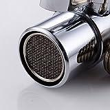 Weirun BRASS Diverter for Kitchen or Bathroom