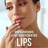 ChapStick Classic Lip Balm Skin Protectant Bulk, 12