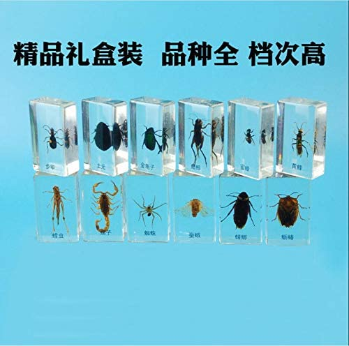 R/éel des insectes standard Yuan indig/ène dOr Tortue Jaune Abeille Scorpion araign/ée Silkworm Moth Cockroach Locust Cricket Embedding Set