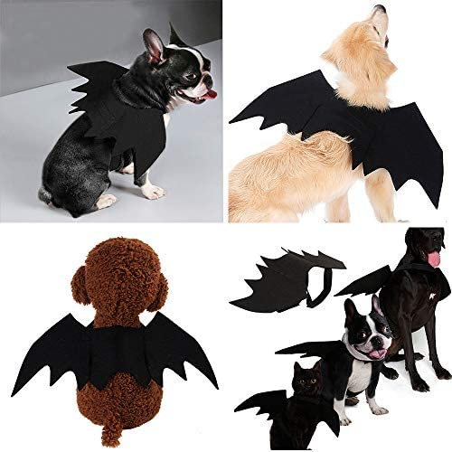 Malier Halloween Cat Costume for Cats Dogs Pet Bat Wings Cat Dog Bat Costume Wings (Small) 25