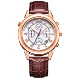 JEDIR Men Special Chronograph Sport Quartz Watch Two-Sided Analog Dial with Date Window Silver Case Leather Strap (Rose Gold Black)