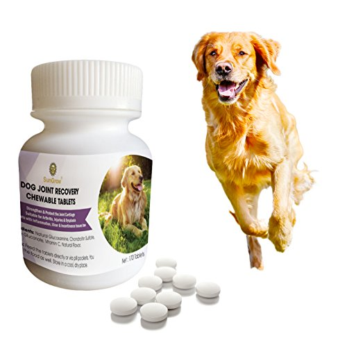 - Dog Joint Recovery Chewable Tablets -170 pcs with Glucosamine, Chondroitin Sulfate and Vitamin C