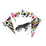 Discover World Shrimp Marine Organism Poker Playing Card Tabletop Board Game Gift