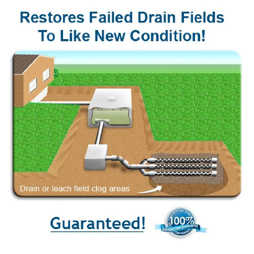 Powerful NT-MAX Septic Tank Maintenance Treatment #28. Water Soluble - Flushable Bio-Packs Guard and Protect your system for life. Eliminates Odors and Keeps Your Entire Septic System Sparkling Clean. Patented and Guaranteed to Perform. 28 Month Supply. by NT-MAX (Image #3)
