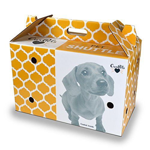Cosmic Pet Shuttle Cardboard Carrier (Pet Shuttle)