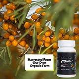 Sea Buckthorn Oil Blend Omega 7 Complete Supplement 100% Organic Vegan Capsule