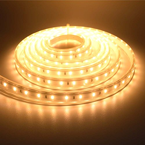 220V Led Rope Light - 3