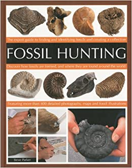 Fossil Hunting An Expert Guide To Finding And Identifying Fossils Creating A Collection Steve Parker 0783324867954 Amazon Books