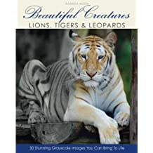 Beautiful Creatures: Lions, Tigers & Leopards