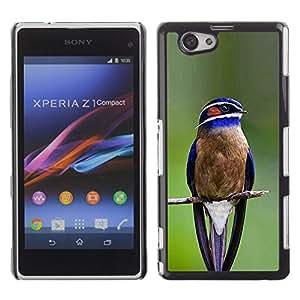 Be Good Phone Accessory // Dura Cáscara cubierta Protectora Caso Carcasa Funda de Protección para Sony Xperia Z1 Compact D5503 // blue bird songbird green branch feather