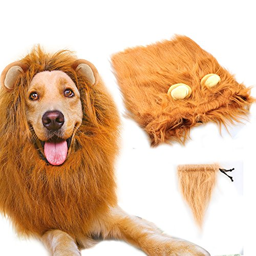 Holiday Costumes Dog (Dog Lion Mane,Gimilife Lion Mane Wig Costumes for Small Medium Large Sized Dog With Ears & Tail,Fancy Lion Hair For Holiday Photo Shoots Party Festival Occasion (M Size,Red)