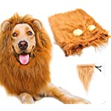 Dog Lion Mane,Gimilife Lion Mane Wig Costumes for Small Medium Large Sized Dog With Ears & Tail,Fancy Lion Hair For Holiday Photo Shoots Party Festival Occasion (M Size,Red Brown)