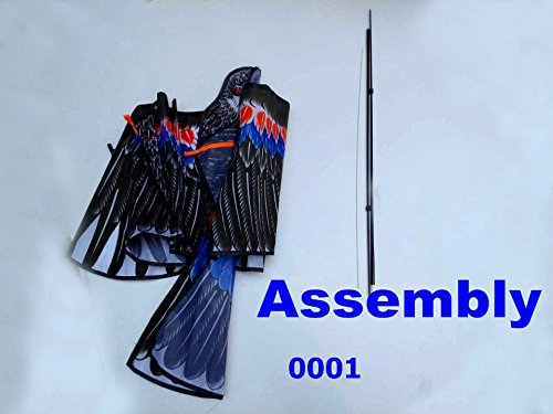 Most Popular Kite Accessories