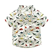LNGRY Baby Clothes,Toddler Baby Boys Cute Cartoon Dinosaur Print Pocket T Shirt Tops Blouse Clothes (2-3 Years Old, White)