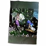 3dRose WhiteOak Art Designs Fairy Prints - Three Fairies - 12x18 Towel (twl_38081_1)
