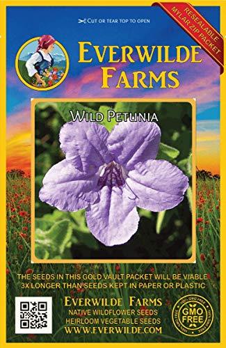 (Everwilde Farms - 100 Wild Petunia Native Wildflower Seeds - Gold Vault Jumbo Seed Packet)