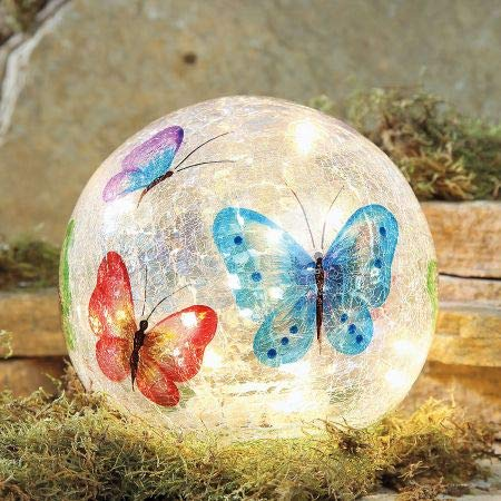 Lillian Vernon LED Butterfly Globe- 6 Inch Painted Glass ()