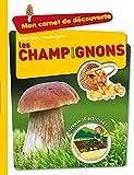 """Afficher """"Les champignons"""""""
