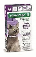 Advantage Ii Large Cat 2-Pack